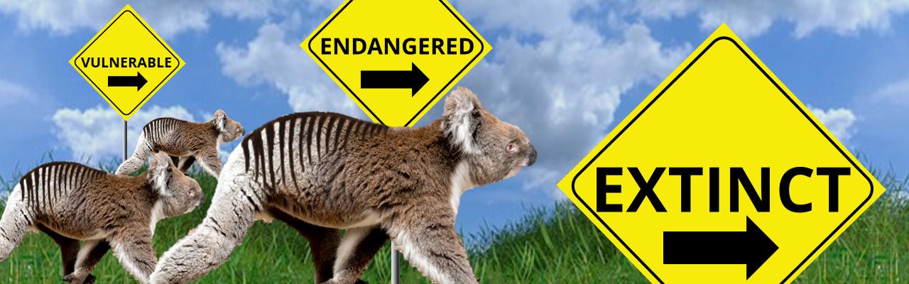 slide - Slide 07 – FOK-slider-Prevent-Extinction
