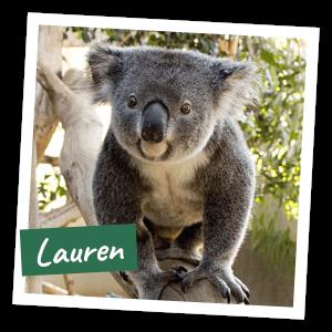 FoK Adopt a Koala - Lauren
